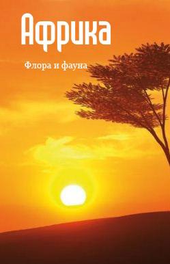Отсутствует Африка: флора и фауна