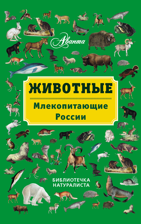 В. Г. Бабенко Животные. Млекопитающие России