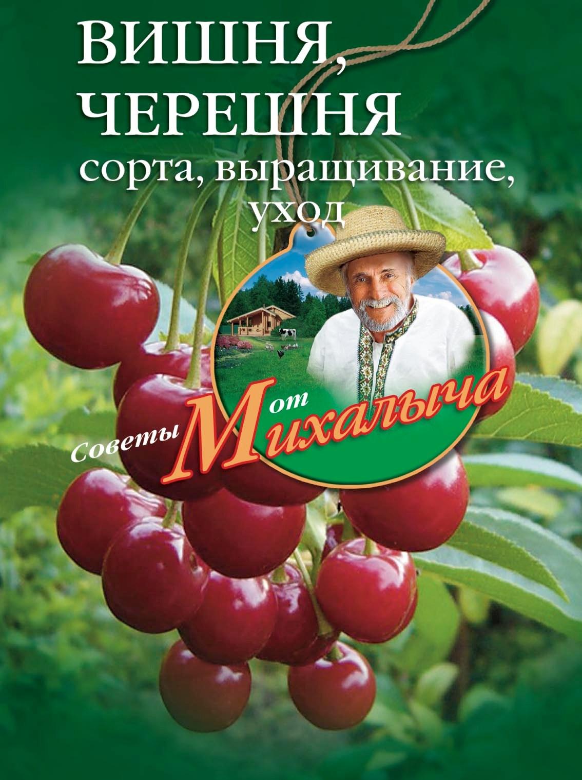 Николай Звонарев Вишня, черешня. Сорта, выращивание, уход, заготовки