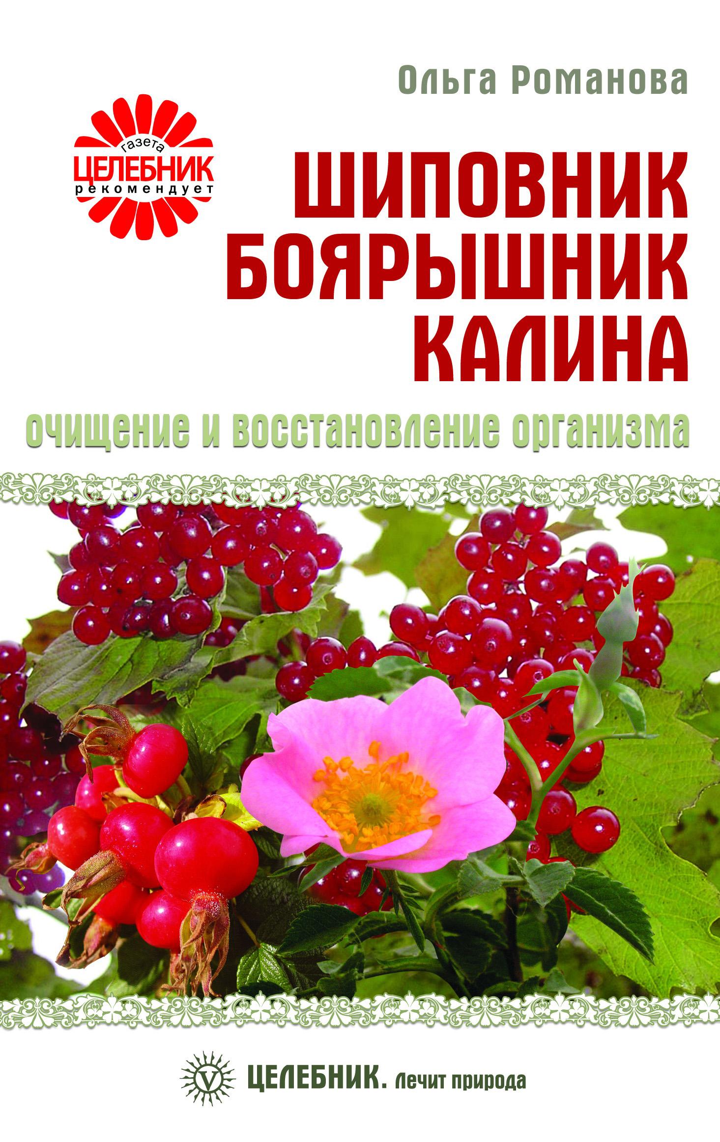 Ольга Романова Шиповник, боярышник, калина. Очищение и восстановление организма