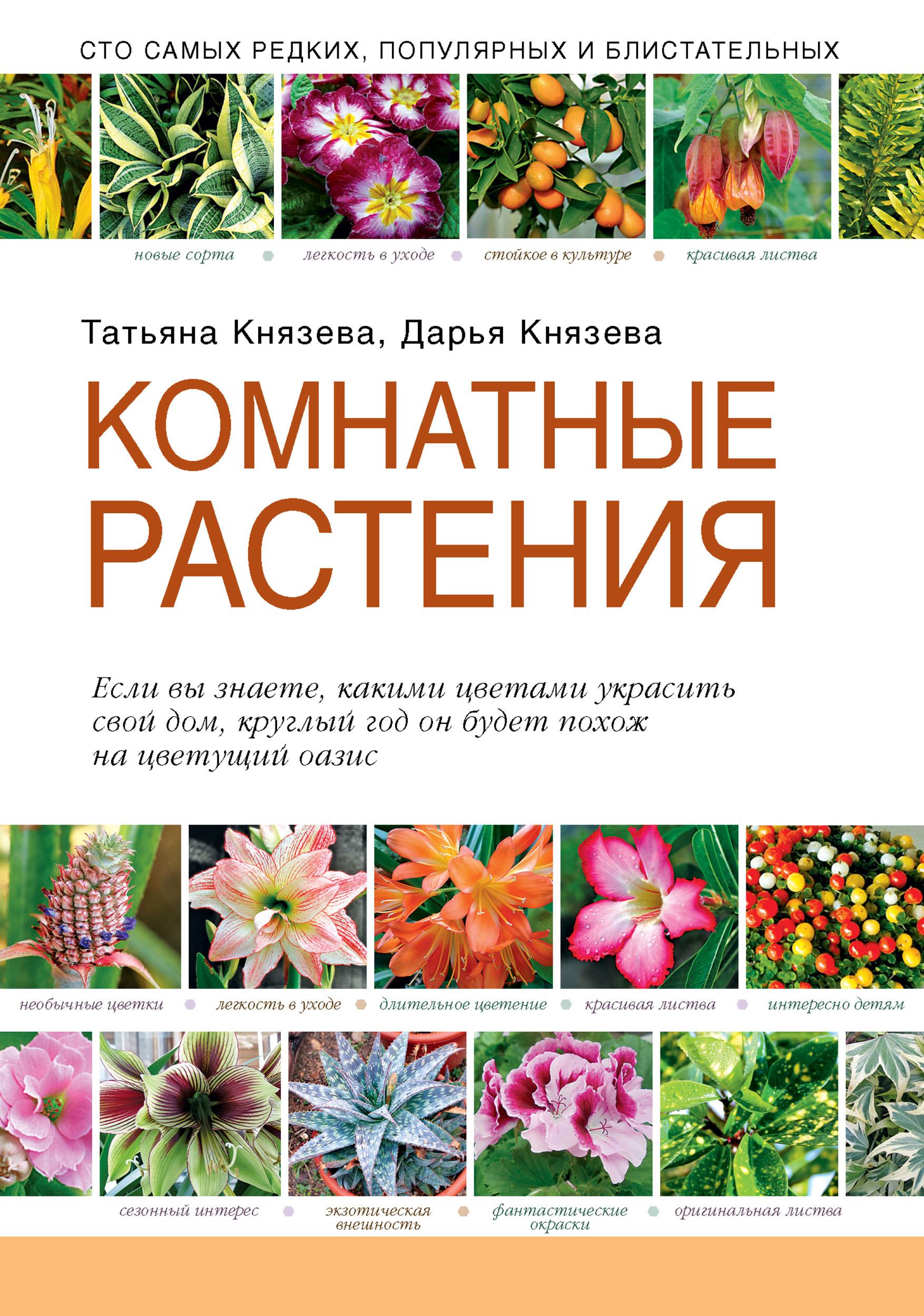 Дарья Князева Комнатные растения блейз о красивоцветущие комнатные растения 2 е издание