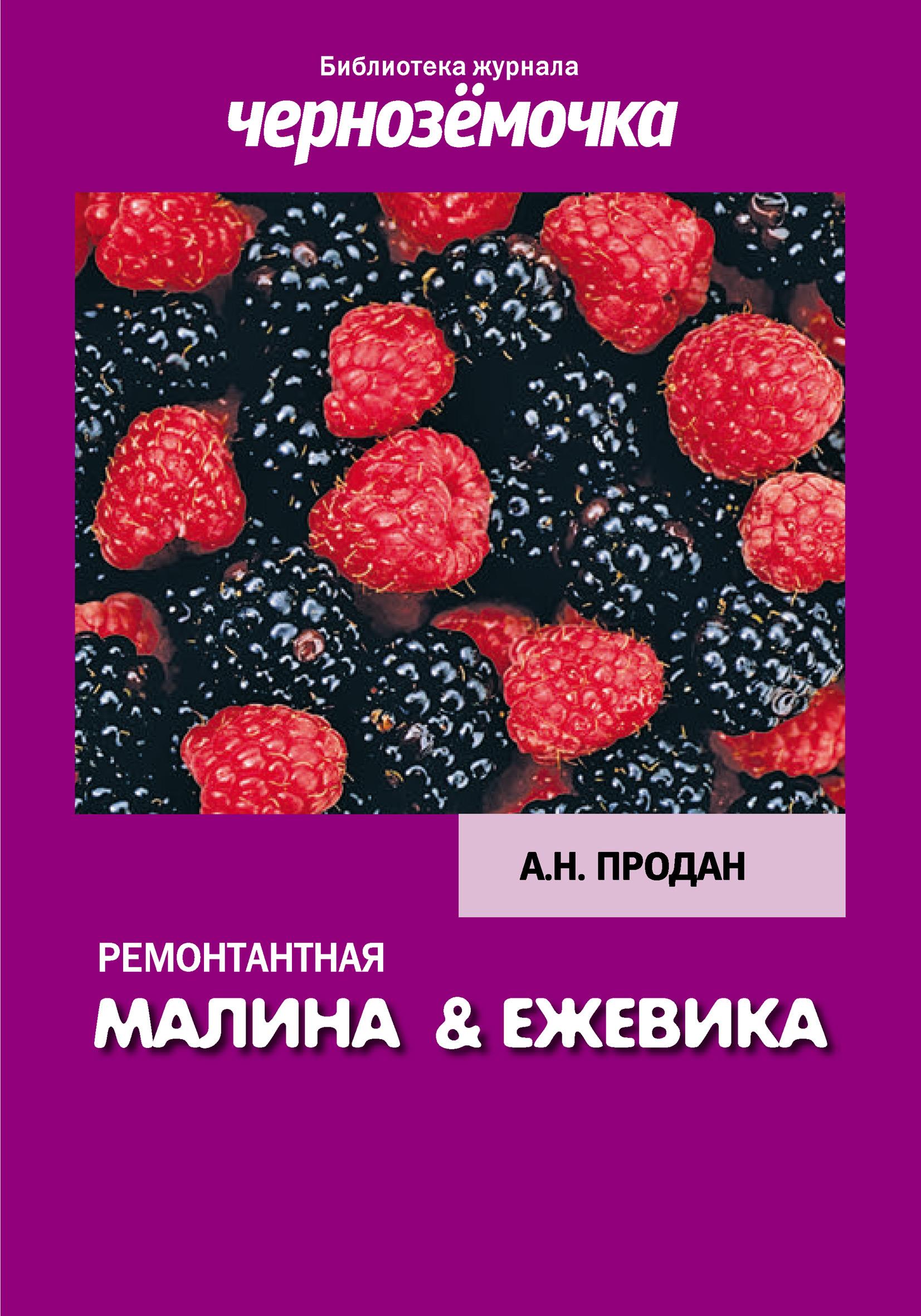 А. Н. Продан Ремонтантная малина и ежевика мебель черноземья каталог