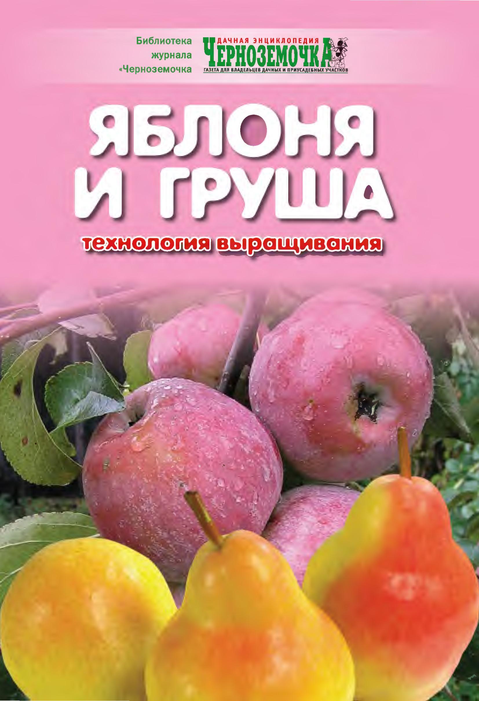 Отсутствует Яблоня и груша. Технология выращивания