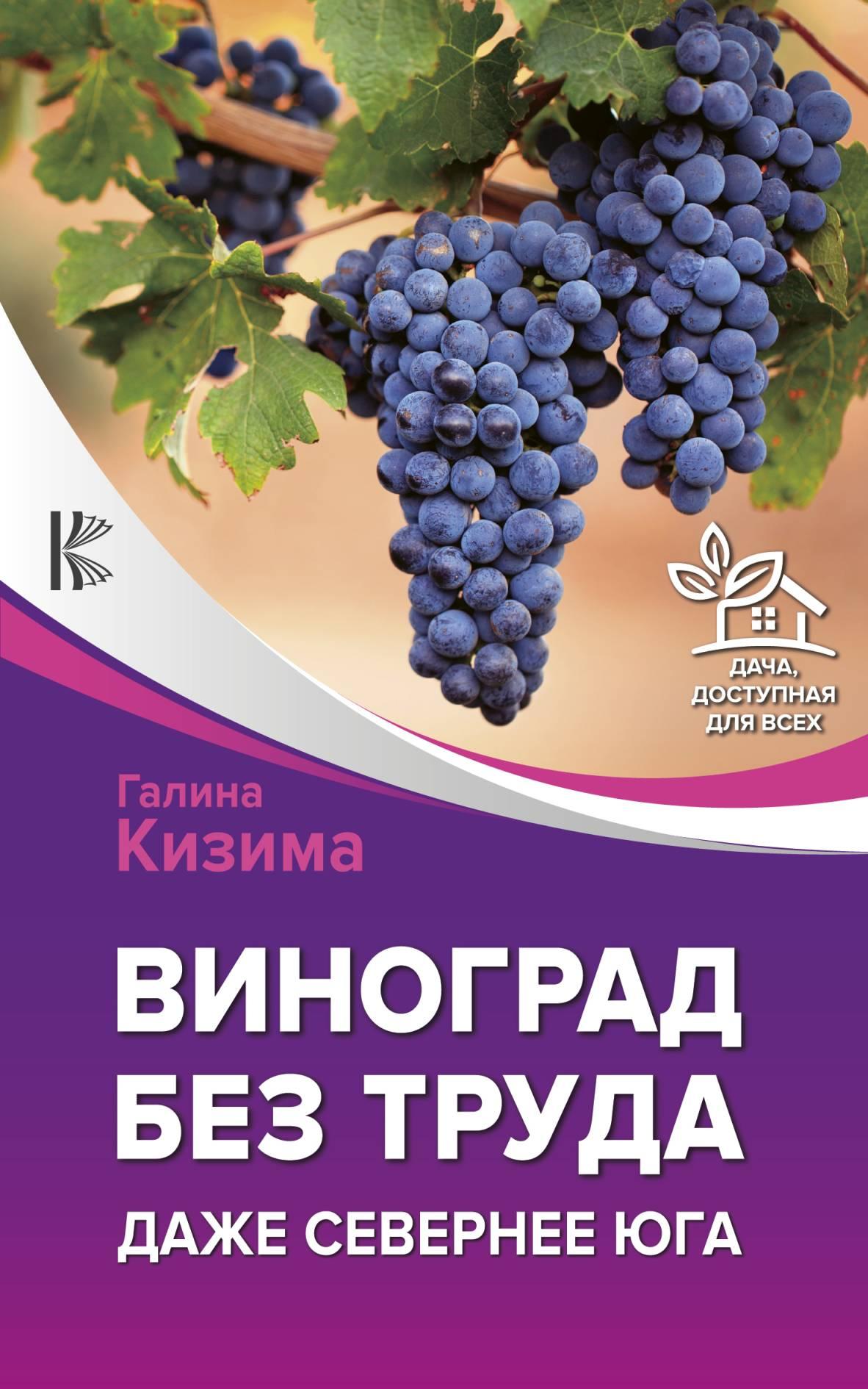 Галина Кизима Виноград – это просто! Российские виноградники от юга до севера цена
