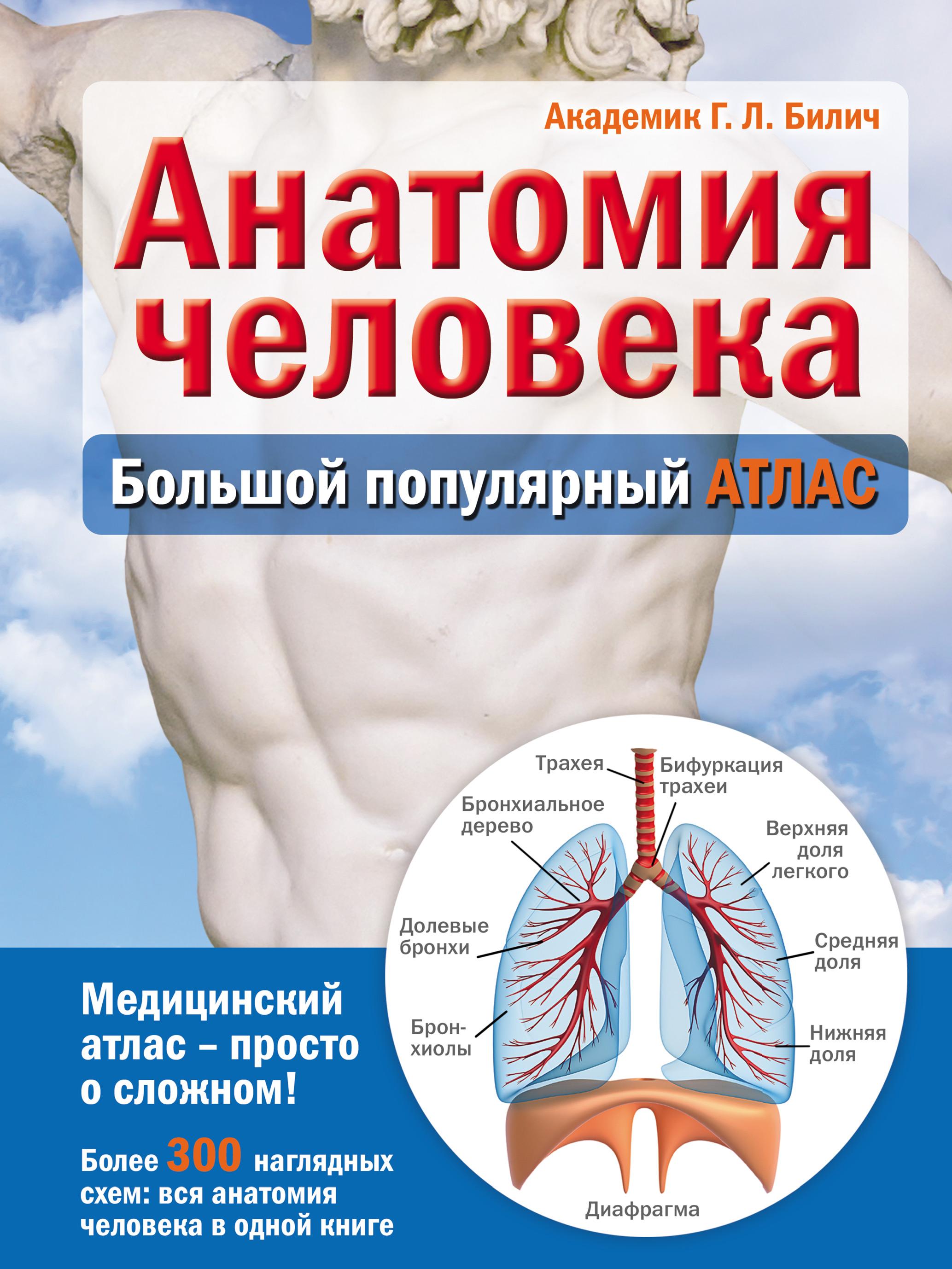 Г. Л. Билич Анатомия человека. Большой популярный атлас г л билич анатомия человека большой популярный атлас