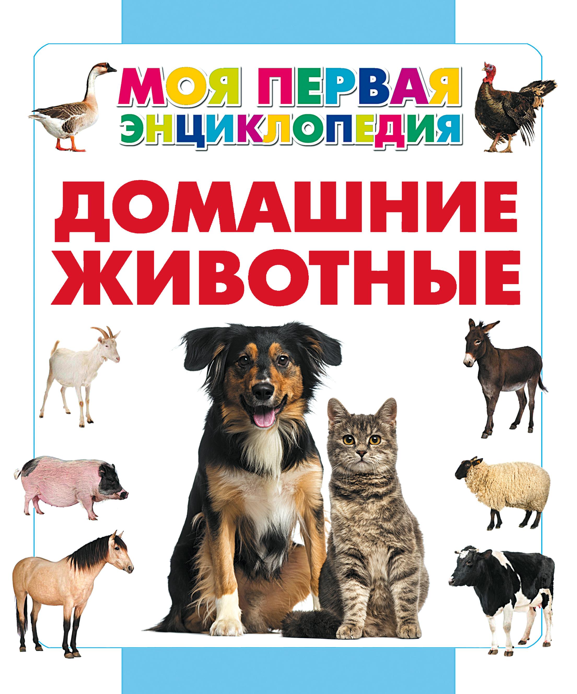 А. А. Спектор Домашние животные