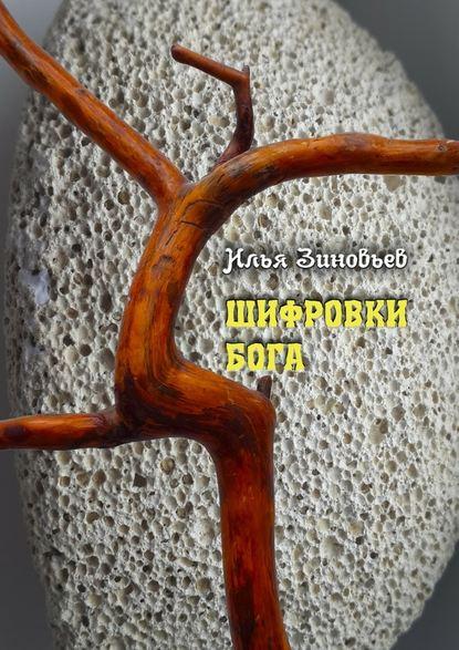 ШИФРОВКИ БОГА : Зиновьев Илья
