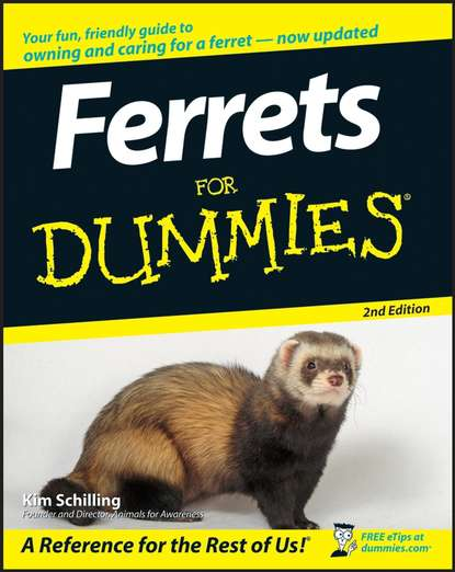 Kim Schilling Ferrets For Dummies margie warrell make your mark a guidebook for the brave hearted
