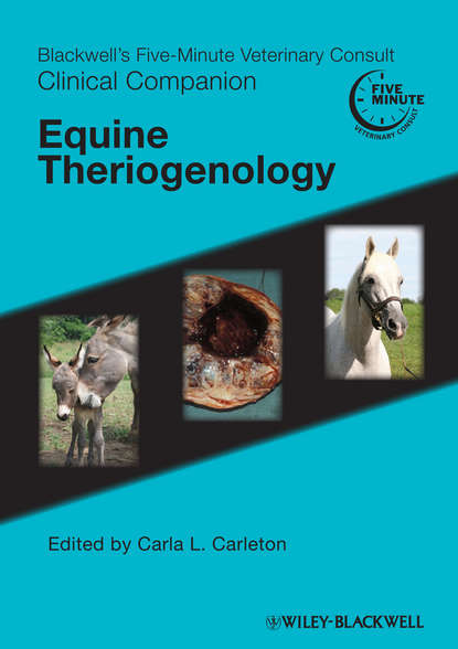 Carla Carleton L. Blackwell's Five-Minute Veterinary Consult Clinical Companion. Equine Theriogenology john dascanio equine reproductive procedures