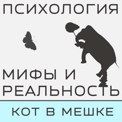 Александра Копецкая (Иванова) Кот в мешке! Часть 6 александра копецкая иванова не такой как все не значит что хуже