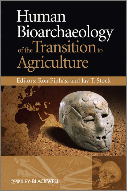 Stock Jay T. Human Bioarchaeology of the Transition to Agriculture отсутствует behavioral ecology and the transition to agriculture