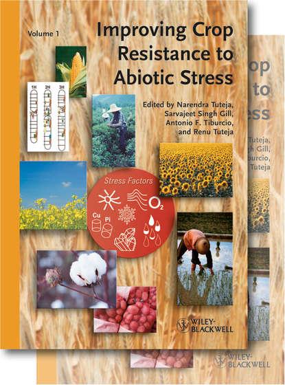 Группа авторов Improving Crop Resistance to Abiotic Stress strapless crop top and skinny pants