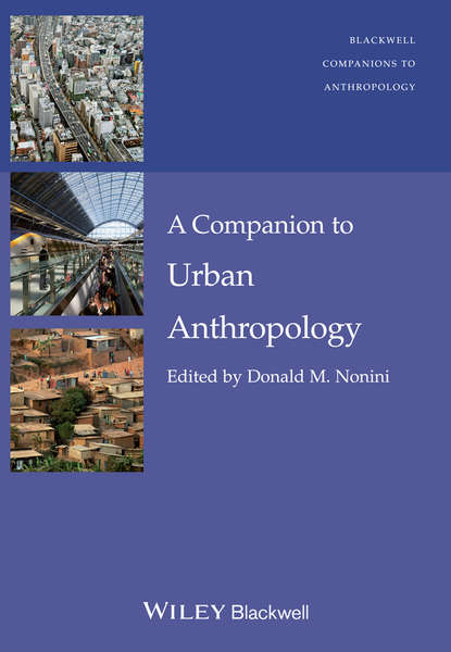 Фото - Donald M. Nonini A Companion to Urban Anthropology susanne charlesworth m urban pollution science and management