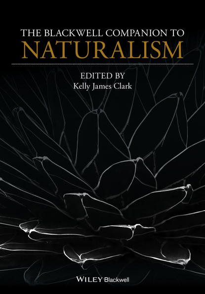 Kelly Clark James The Blackwell Companion to Naturalism allan williams m the wiley blackwell companion to tourism
