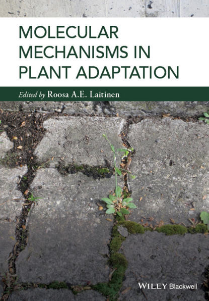 Roosa Laitinen Molecular Mechanisms in Plant Adaptation visuomotor adaptation in older adults with and without mci