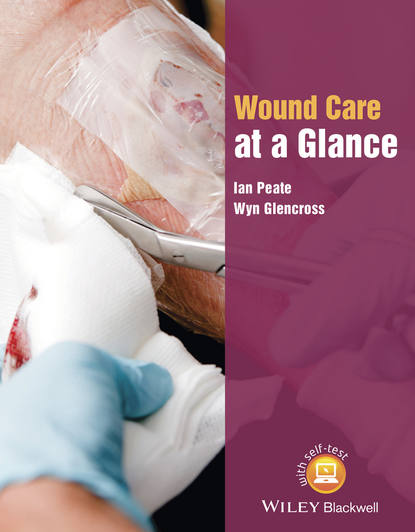 Ian Peate Wound Care at a Glance colin rees nursing and healthcare research at a glance