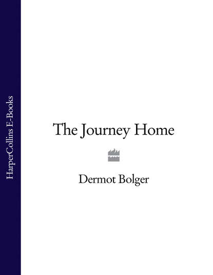 Фото - Dermot Bolger The Journey Home bryan gallagher barefoot in mullyneeny a boy's journey towards belonging