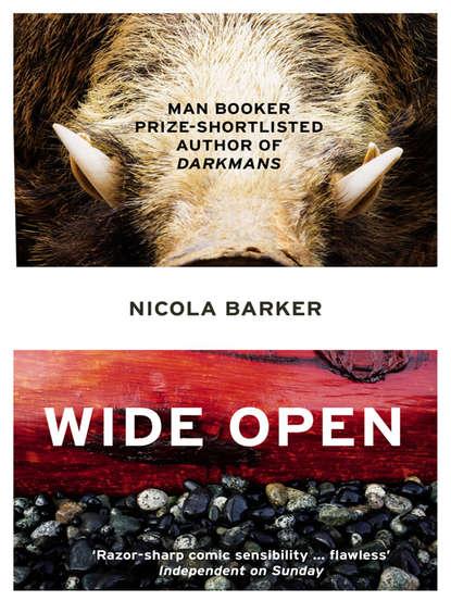 Nicola Barker Wide Open