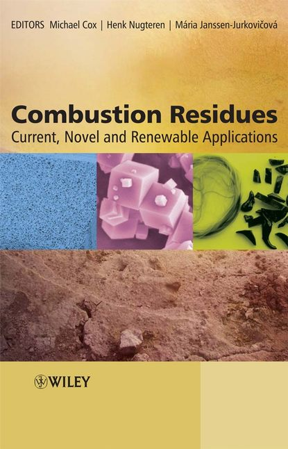 Michael Cox Combustion Residues maximilian lackner combustion from basics to applications