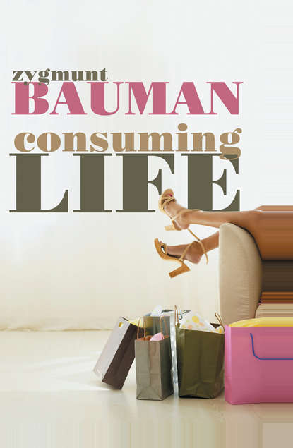 Zygmunt Bauman Consuming Life derek gregory ron martin grahame smith human geography society space and social science