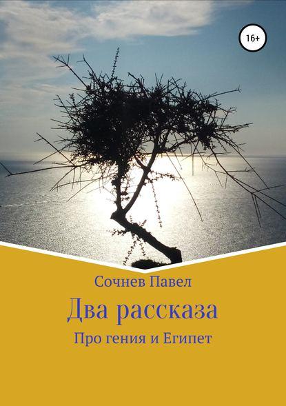 Павел Николаевич Сочнев Два рассказа павел николаевич сочнев шаг за шагом