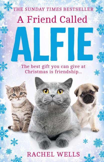Rachel Wells A Friend Called Alfie alfie s christmas
