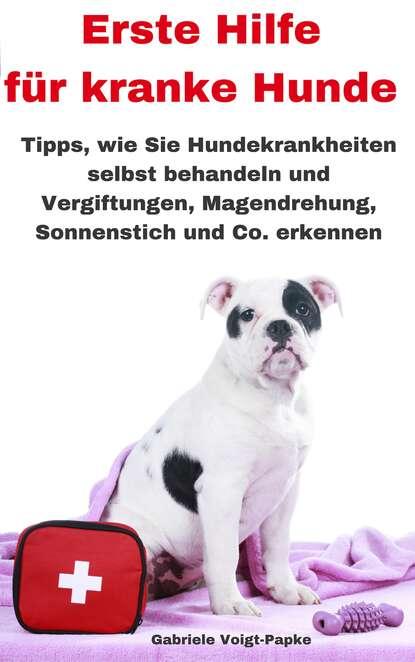 Gabriele Voigt-Papke Erste Hilfe für kranke Hunde michael streicher erste hilfe für meine katze