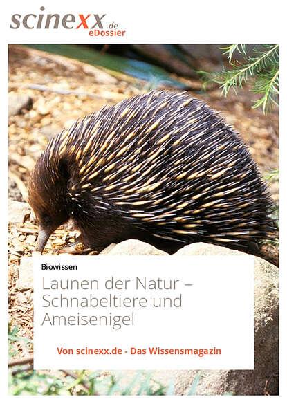 Dieter Lohmann Launen der Natur недорого