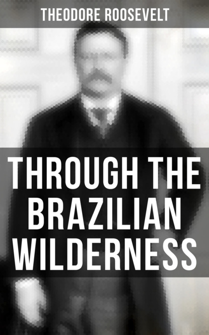 Фото - Theodore Roosevelt Through the Brazilian Wilderness robert w griggs a pelican of the wilderness