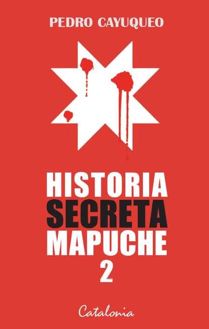 Фото - Pedro Cayuqueo Historia secreta mapuche 2 pedro a piedras monroy la siega del olvido