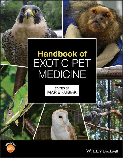 Группа авторов Handbook of Exotic Pet Medicine группа авторов handbook of sports medicine and science sport psychology
