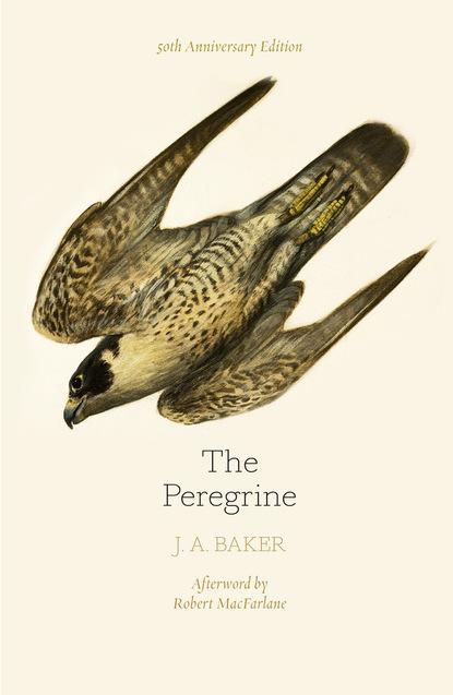J. A. Baker The Peregrine: 50th Anniversary Edition j mark baker the kuhls of kangra