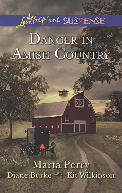 Фото - Marta Perry Danger In Amish Country marta perry a time to forgive