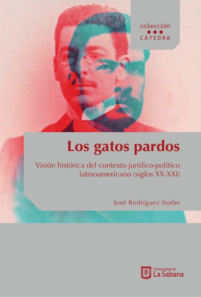 José Rodríguez Iturbe Los gatos pardos josé luis comellas garcía lera historia de españa en el siglo xix