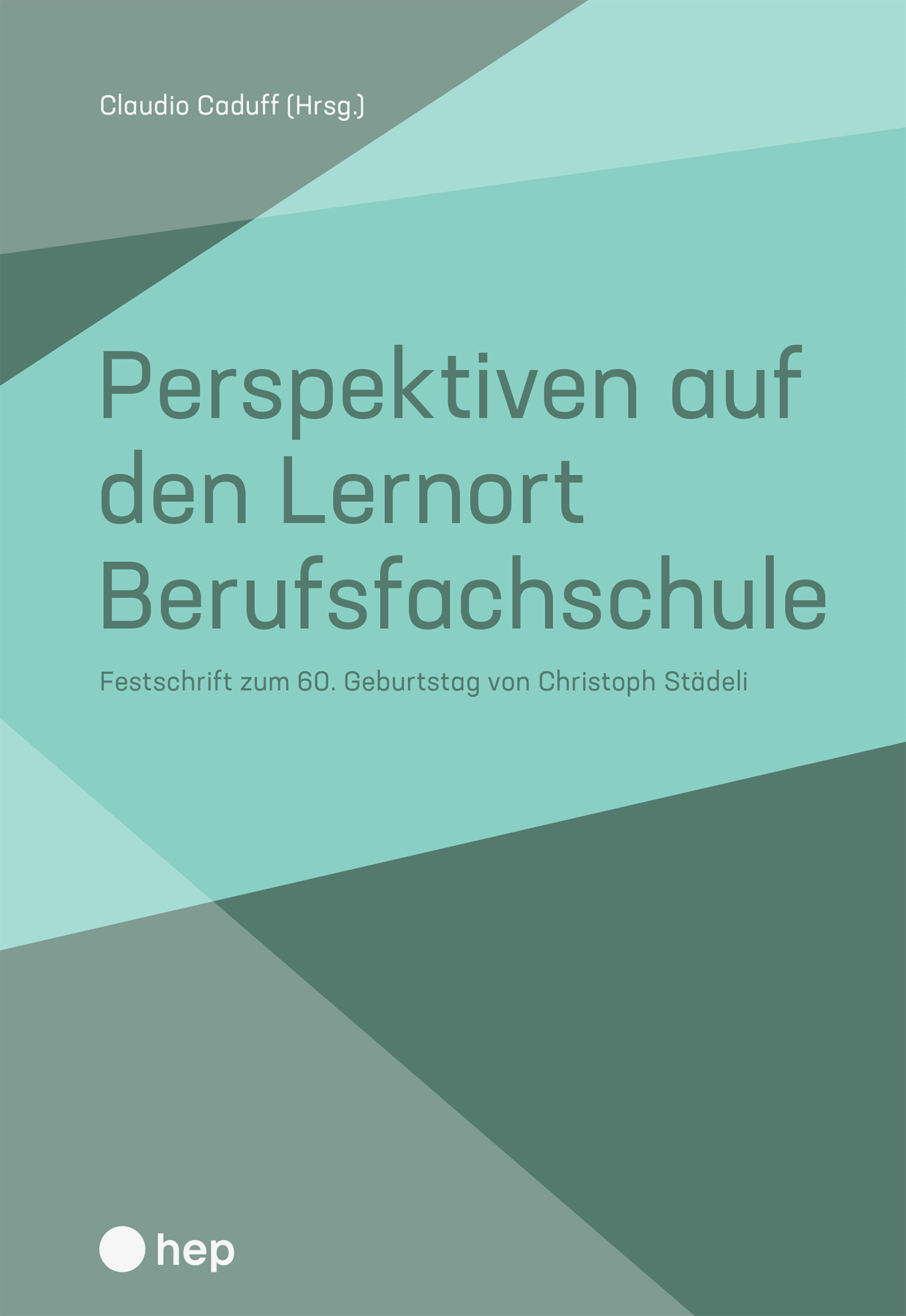 Perspektiven auf den Lernort Berufsfachschule (E-Book)