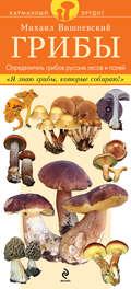 Грибы. Определитель грибов русских лесов и полей