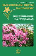 Выращиваем цветы на продажу. Выращивание на стеллажах