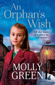 An Orphan's Wish: The new, most heartwarming of christmas novels you will read in 2018