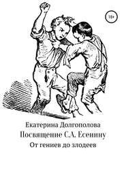 Посвящение С.А. Есенину