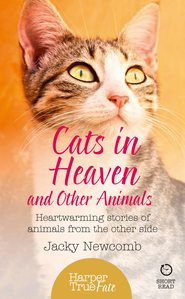 Cats in Heaven: And Other Animals. Heartwarming stories of animals from the other side.