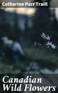 Canadian Wild Flowers
