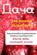 Что можно вырастить? Энциклопедия выращивания ягодных кустарников: алыча, айва, виноград, вишня