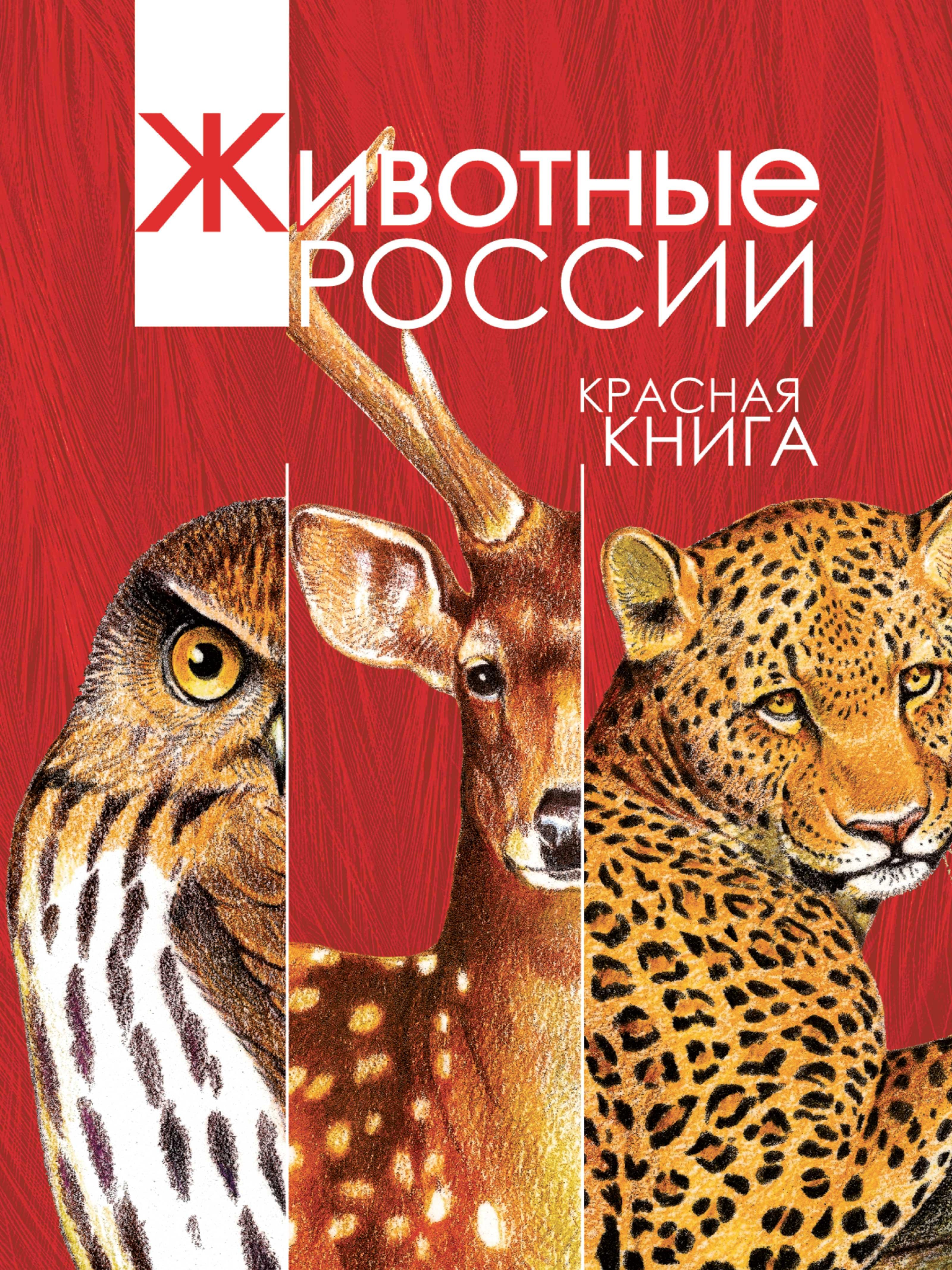 Животные России. Красная книга