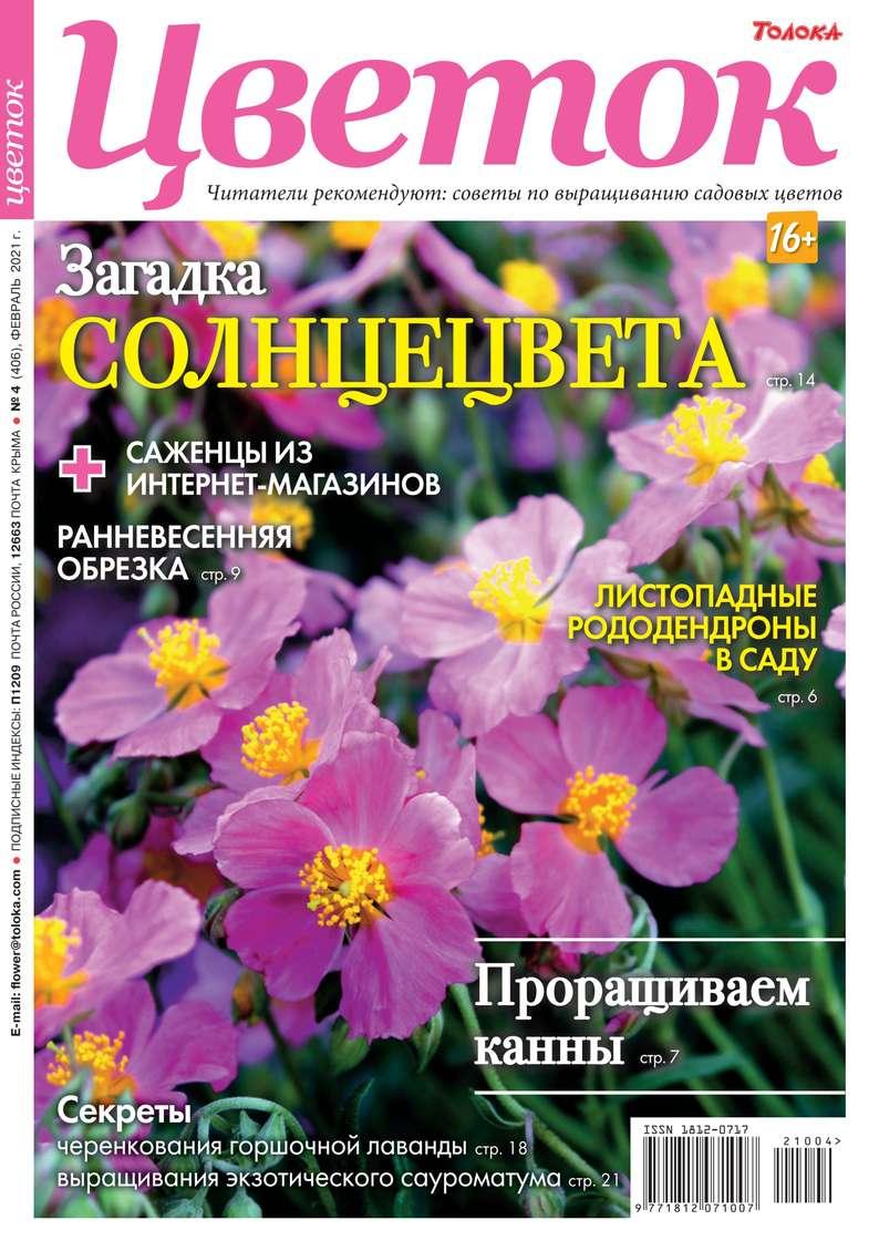 Цветок 04-2021