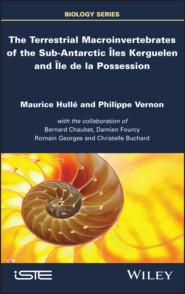 The Terrestrial Macroinvertebrates of the Sub-Antarctic Iles Kerguelen and Ile de la Possession