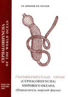 Головохоботные черви (Cephalorhyncha) Мирового Океана (Определитель морской фауны)