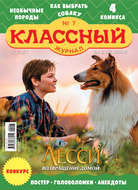 Классный журнал №07\/2020