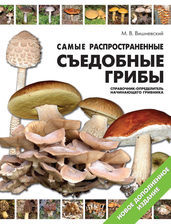 атлас грибов с картинками