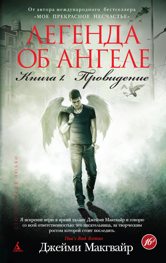 скачать книгу легенда об ангеле. книга 1. провидение
